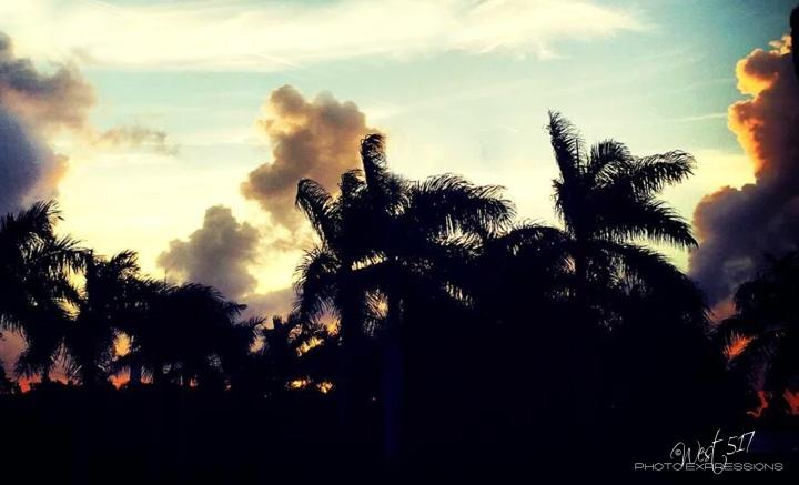 Morning_Blue