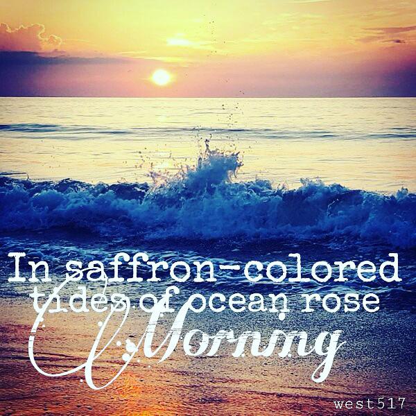 Saffron_Tide_Final