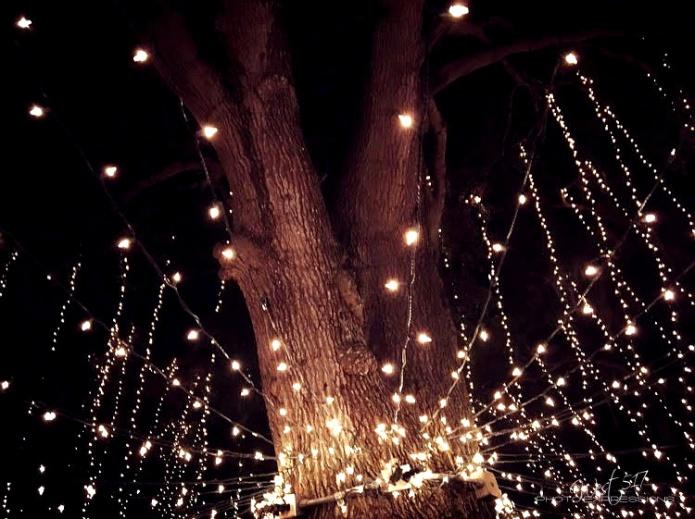 lights_final_01
